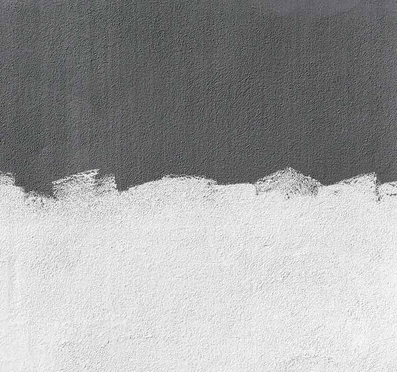 bissolotecnologie_walls2